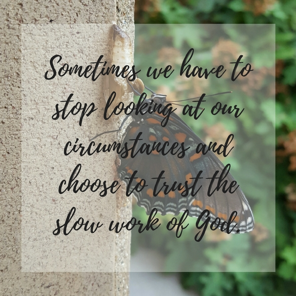 Trust the slow work of God