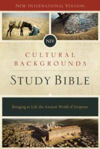 Cultural Study Bible
